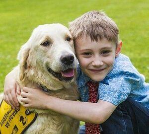 Když psi pomáhají handicapovaným dětem